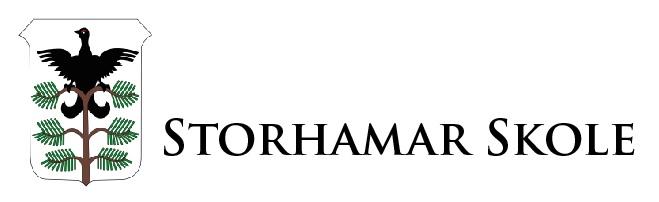 Storhamar Skole